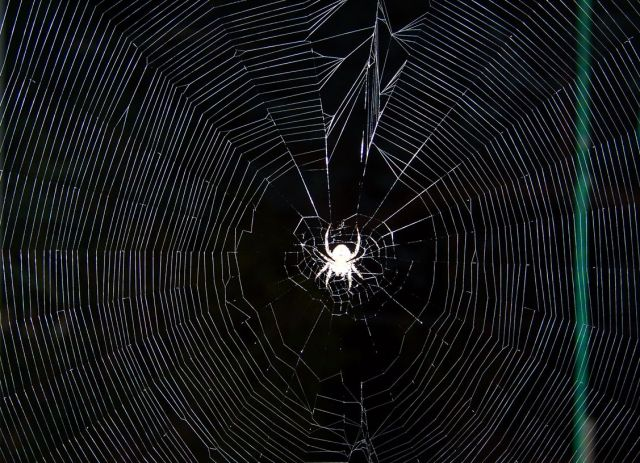 Ghislaine Maxwell, NASA, MK Ultra: Spider's Web of Connections via Lori Colley