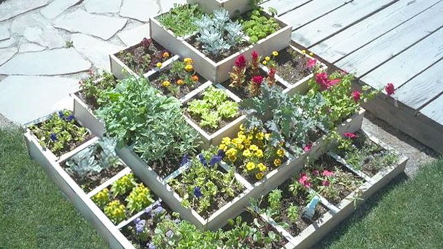Square Foot Gardening SFG Growing More in Less Space