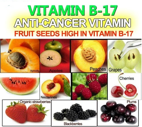 anti-cancer-vitamin-vitamin-b17.jpg