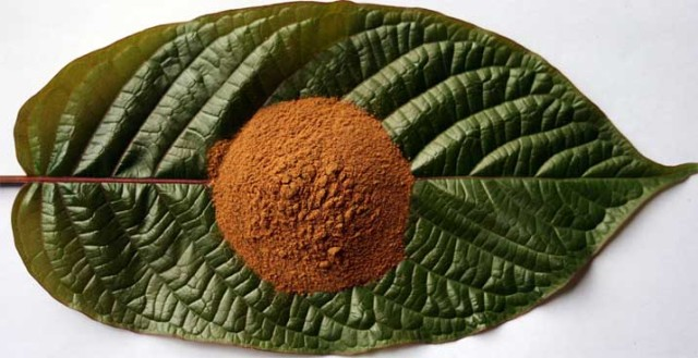 Kratom – Non-Addictive Natural Pain Killer Relieves Chronic Pain, Depression – Leave Rx Drugs Behind