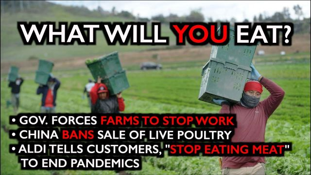Unbelievable: Gov. Forces Farms to Shut Down. Food Shortages Imminent (Video)