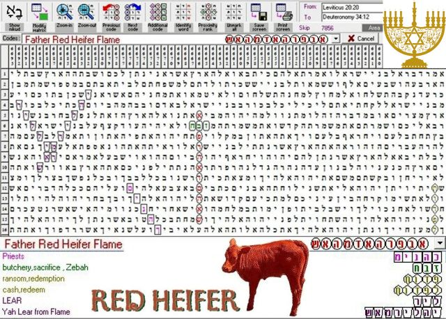 Father Red Heifer Flame - Torah Code Discovery - ABN - The Armageddon Broadcast Network - RayEl HaMoshiach
