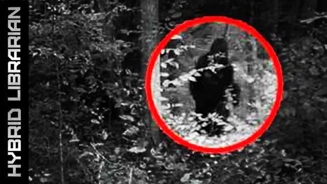 10 Mythical Creatures That Turned Out To Be Real | Paranormal