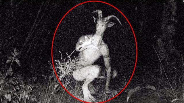 5 Real Goatman Attacks | Paranormal