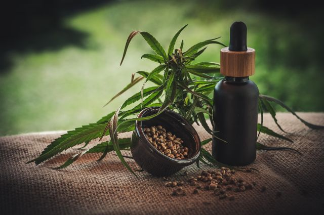 Image result for image of Organic Hemp Extract MAY LOWER RISK OF DIABETES AND HEART DISEASE.