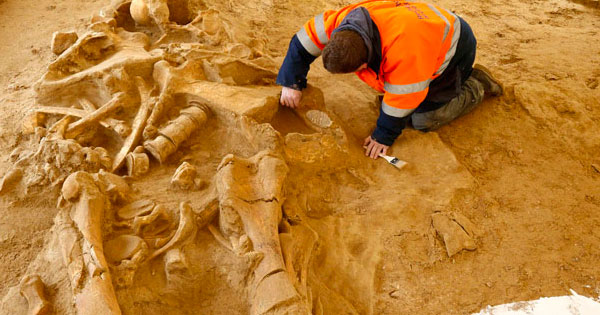 5-meter tall human skeleton unearthed in australia | conspiracy, Skeleton