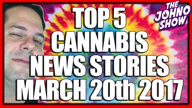Top 5 Cannabis News Stories for the Week of March 20th ...