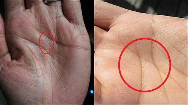 Only 3% of the population has an X on their palms