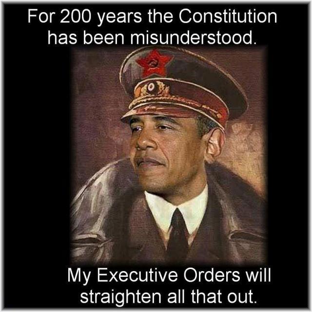 obama-the-dictator-1-12-2013.jpg